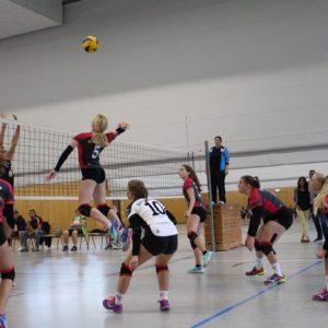 6 Punkte für die N.H. Young Volleys